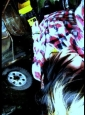 Emo Boys Emo Girls - ExplorersOfSky - thumb109118