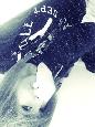 Emo Boys Emo Girls - Jessy_Kills_Zombies - thumb53561