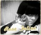 Emo Boys Emo Girls - Rose_Feline - thumb114225