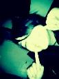 Emo Boys Emo Girls - xMariFxckknMassacre - thumb82540